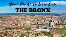 Bronx Building and Practice for Sale